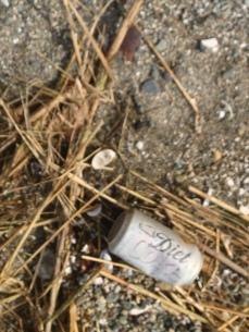 coke litter